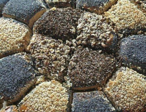 Getreide-Vergiftung: Warum unsere Großeltern mit Gluten kein Problem hatten!